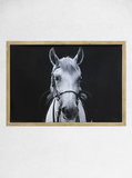 Wood Framed Horse Photo