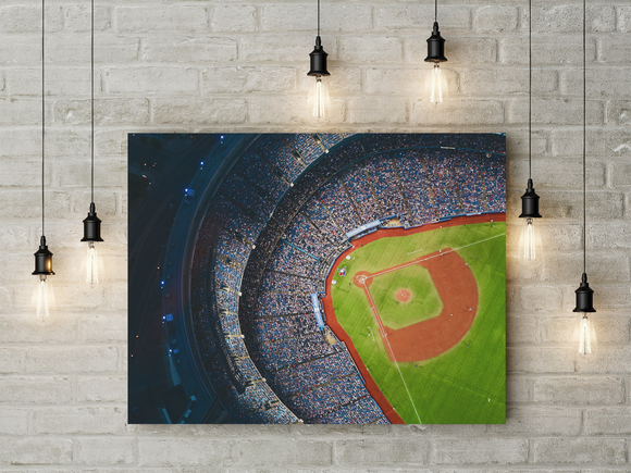 Birds Eye View Ball Game - Level Up Decor