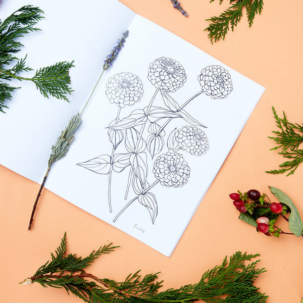 Buds Along The Path Coloring Book by Maria Schoettler