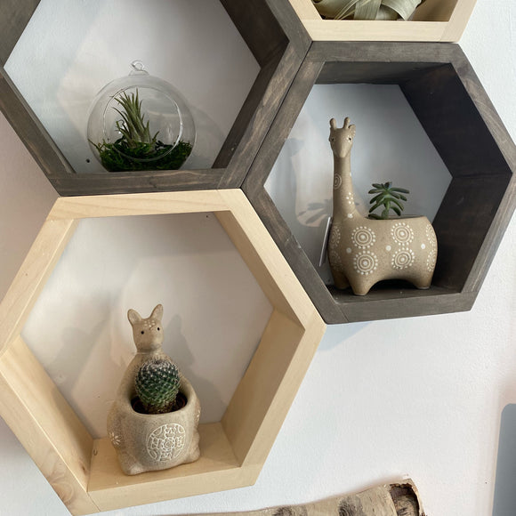 Wooden Hexagon Shelf