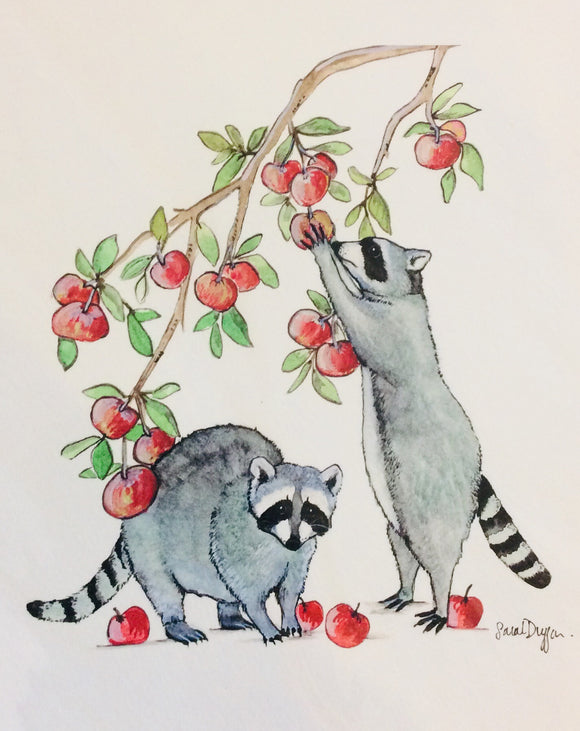 Sarah Duggan Creative Works Prints - Raccoons And Apples