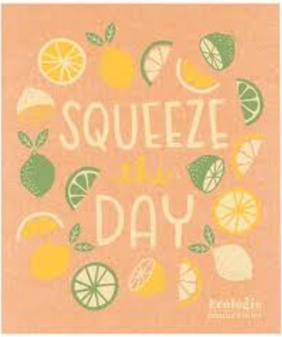 Swedish Dish Cloth Squeeze The Day