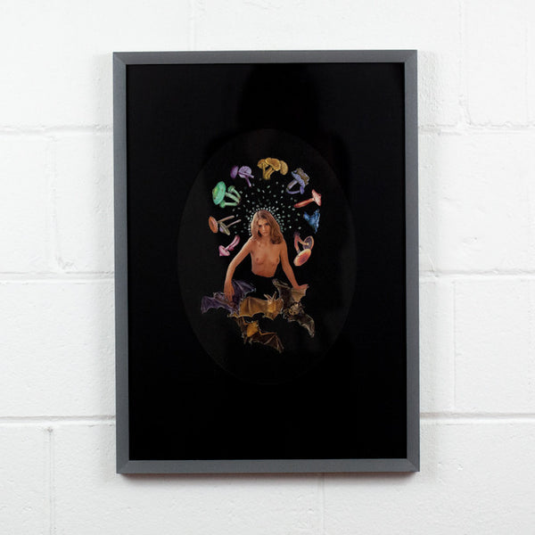 "DAVID WOODWARD ""MIDNIGHT PHEROMONE SPECIAL"" 2014"