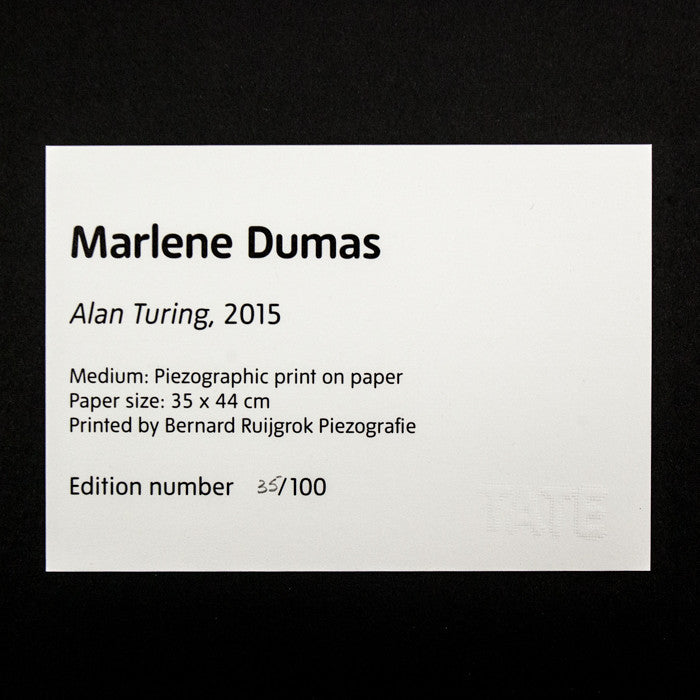 Marlene Dumas, Great Men, Alan Turing, Caviar20, prints