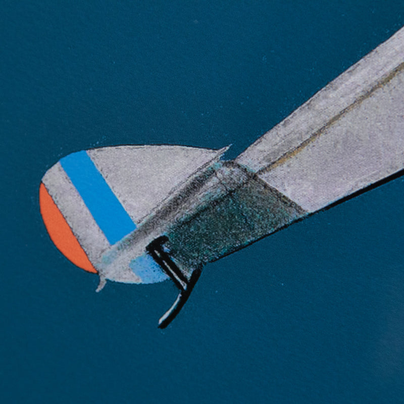 "CHARLES PACHTER ""AIRBORNE"" 2014"