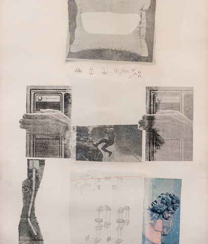 "ROBERT RAUSCHENBERG ""TWO REASONS BIRDS SING"" SCREENPRINT, 1979"
