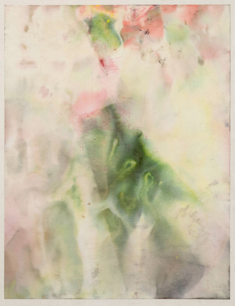 Sam Gilliam on paper Caviar20