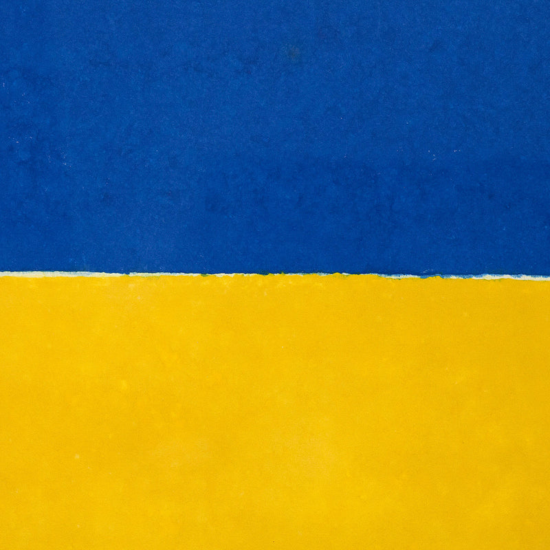 Ellsworth Kelly Colored Paper Image XVI Blue Yellow Red 1976 Caviar20