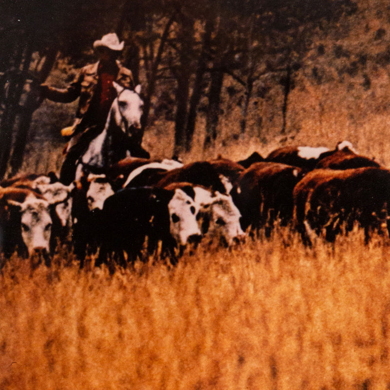 "RICHARD PRINCE ""COWBOYS GANG"" 1992"