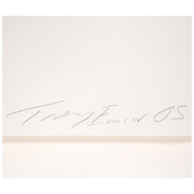 Tracey Emin, About Sex, Lithograph, 2005, Caviar20, close up showing artist signature and date