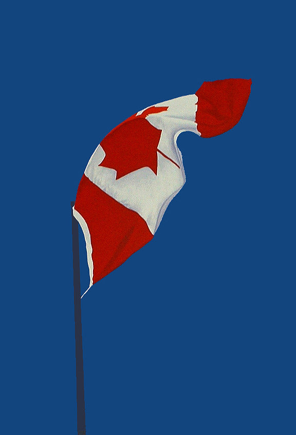 "CHARLES PACHTER ""PAINTED FLAG: VERTICAL BLUE"" 1987"
