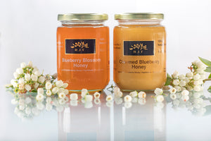 RJT Blueberry Blossom Honey