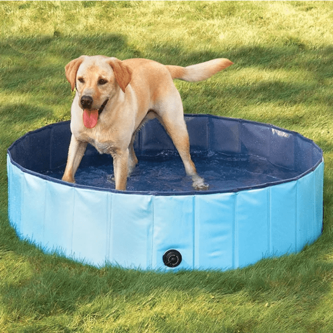 SURPRISEYOU - Dog play in water Resistant Paw Pool