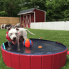 SURPRISEYOU- Dog with ball stand in water Resistant Paw Pool