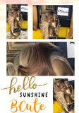 Sunshine Collection B'Cute