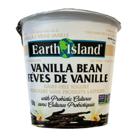 Earth Island Yogurt - Vanilla Bean