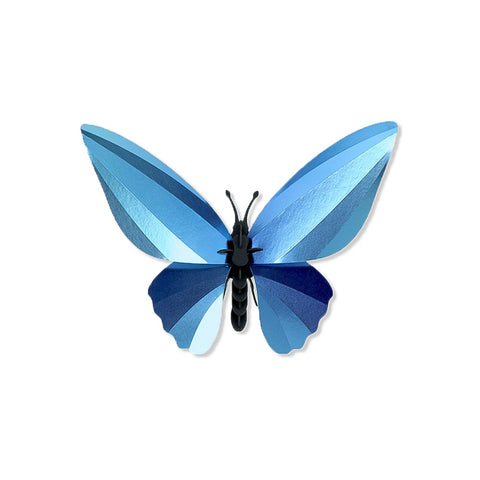 A 3D Birdwing Butterfly on a white background, the body and antennae made of interlocking layers of matte black cardboard, with four wings  made of various shades of blue reflective gradient metallic paper.