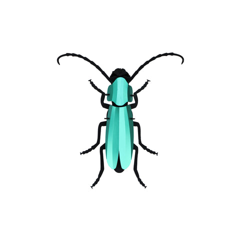 Assembled 3D Rosalia Beetle on a white background. The beetle body, legs and antennae stick out and are made of black cardboard. The topmost shields are made of turquoise metallic paper.