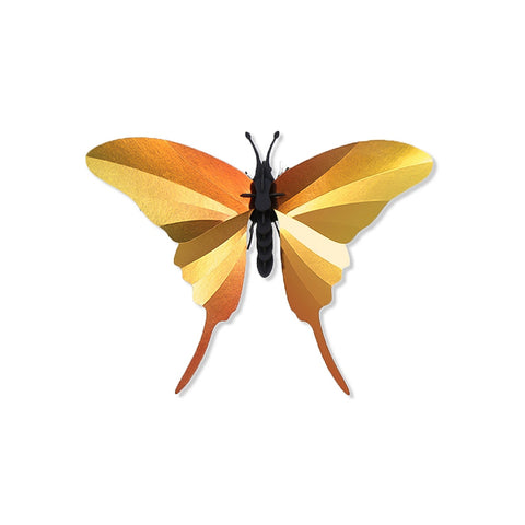 3D Swordtail Butterfly Kit shown assembled on a white background with spread gold, iridescent paper forewings and hind wings  and  3 dimensional matte-black cardboard abdomen, thorax, head and antennae.