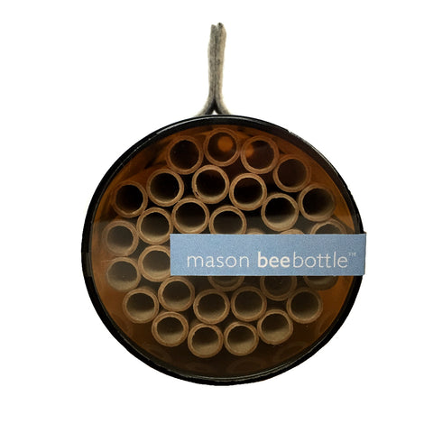 Mason Bee Bottle