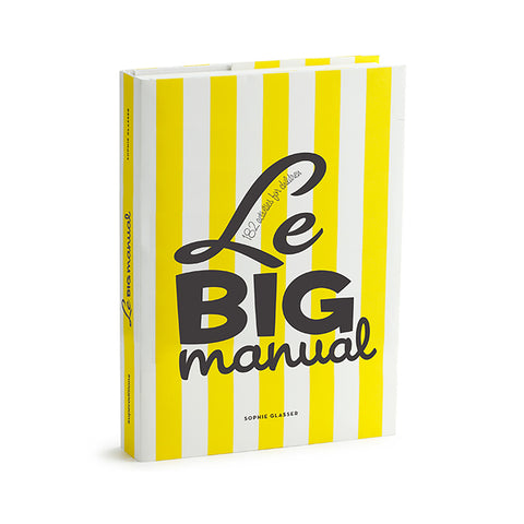 "A book standing upright with a bold yellow and white striped cover. The title is printed playfully using three different fonts: ""Le""  in italic,  ""BIG"" in block.  and ""manual"" in script."