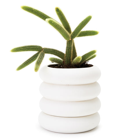 Tall Stacking Planter with circular stoneware sections  which form takes its inspiration from high voltage ceramic insulators found on power lines.  There is a cactus plant set inside.