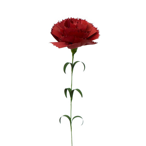 Against a white background, a photograph of a red paper carnation standing vertical with a green stem with small green leaves.