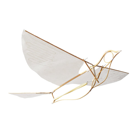 An ornithopter in the shape of a bird. The bird is hollow and the frame is made of thin pieces of delicatley carved wood. Wings and tail are paper.