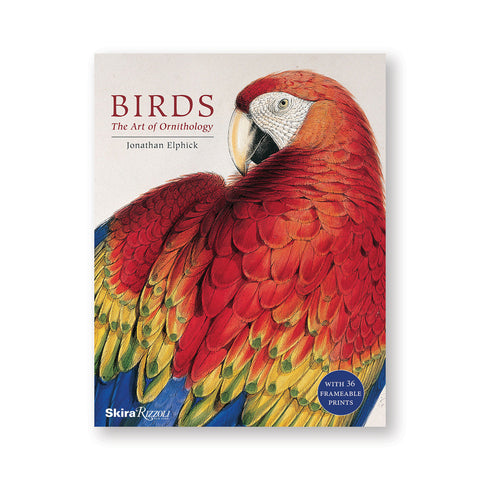 Cream colored book cover with oversized illustration of a red yellow and blue parrot. Title above and to the left in red serif letters