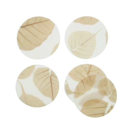 Skeleton Leaves Coasters, Set of 5