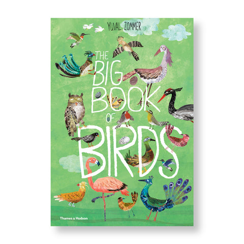 Book cover with illustration of many colorful birds around the hand drawn white title in front a green sky
