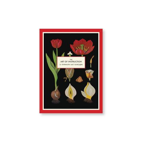 Notecard box with bright red border and black background showcasing plant drawings and cross sections