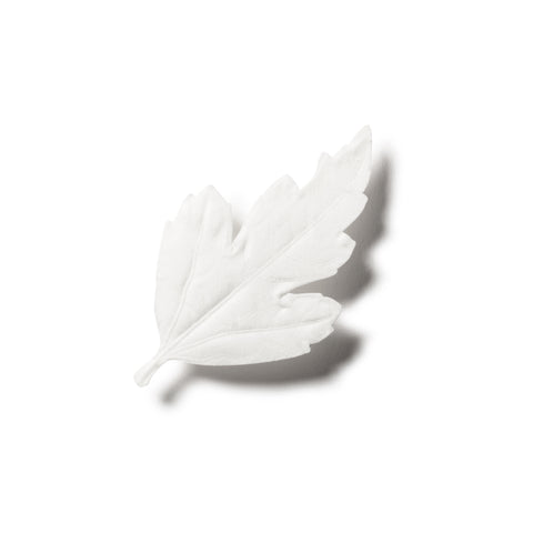 Off-white paper leaf with a stem and a strong drop shadow. Leaf is slightly triangular with ridged edges, faint leaf veins are embossed in the paper.