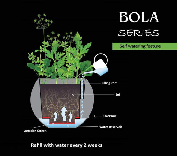 "Bola Series Non-Self Watering Planter - This Elegant Non-Self Watering Planter Provides A Realistic Concrete Look For Your Home & Garden - 12"" / 23"" / 29"" / 35""- BSNSWP12 / BSNSWP23 / BSNSWP29 / BSNSWP35"