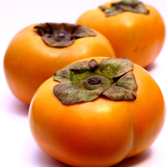 Fuyu Persimmon, Organic and Biodynamic