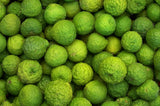 Kaffir Limes (Makrut), Organic and Biodynamic