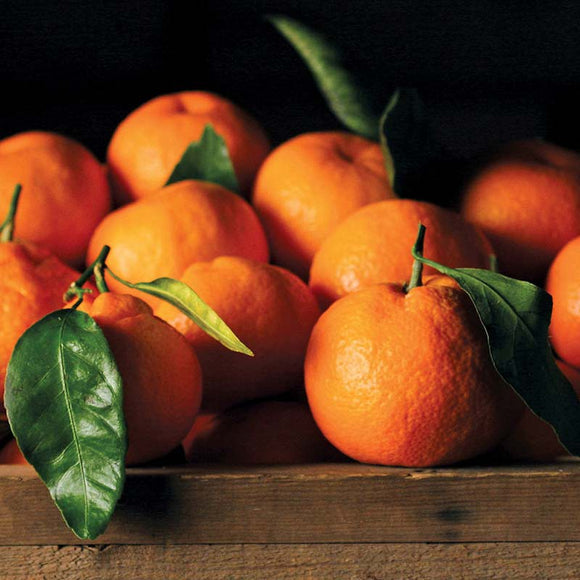 Satsuma Mandarins, Organic and Biodynamic