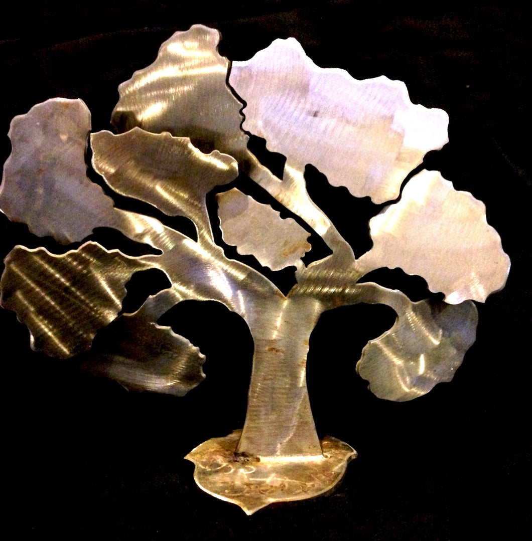 Angel Oak (10 inch)