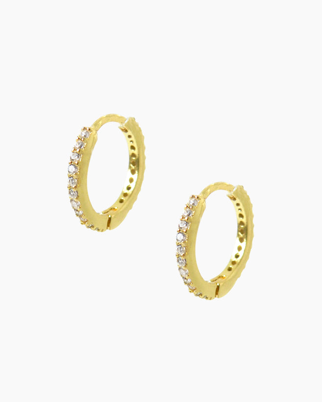 Mini Double Tortoise Hoops