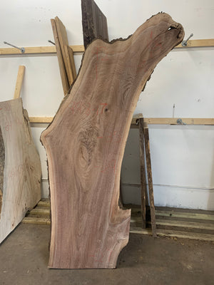 Black Walnut LIve Edge Slab 998-17
