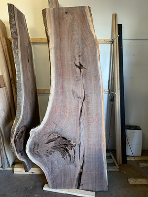 Black Walnut Live Edge Slab 998-15