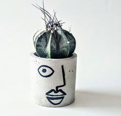 concrete, concrete planter, planter, plants, plant mom, plant lover, potted plants, botanical, alejandro planter, succulents, house plants, indoor plants, fun pots, plant pots, fun planters, stylish plants, minimalist, style