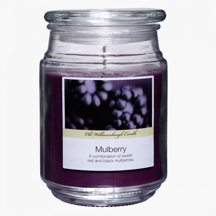 Mulberry Apothecary Jar Candle - 18 Oz