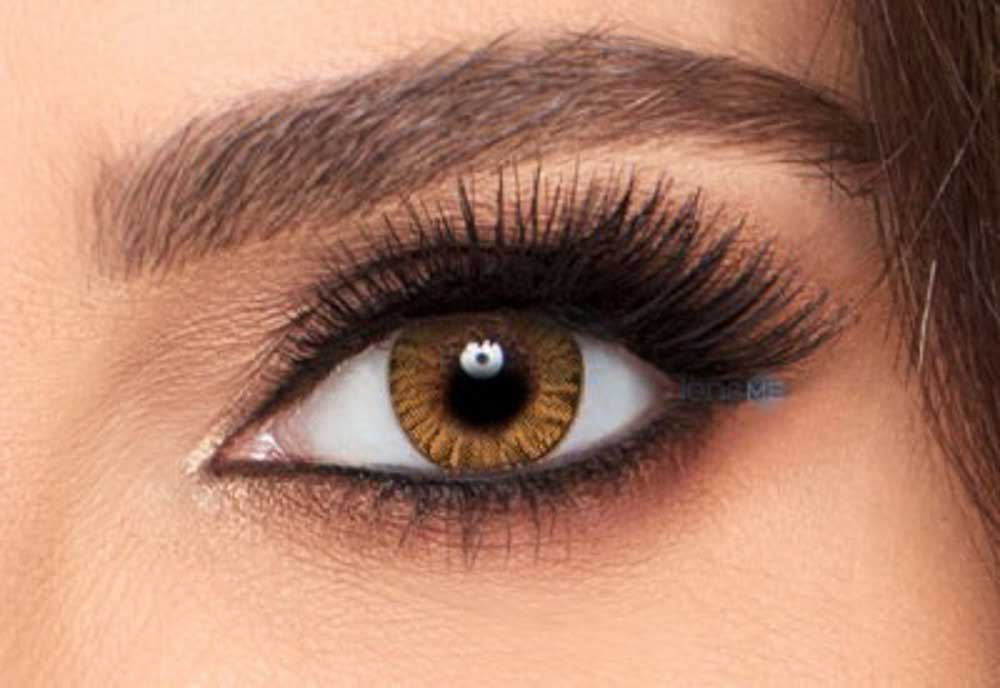 Freshlook Honey Colored Contact Lenses
