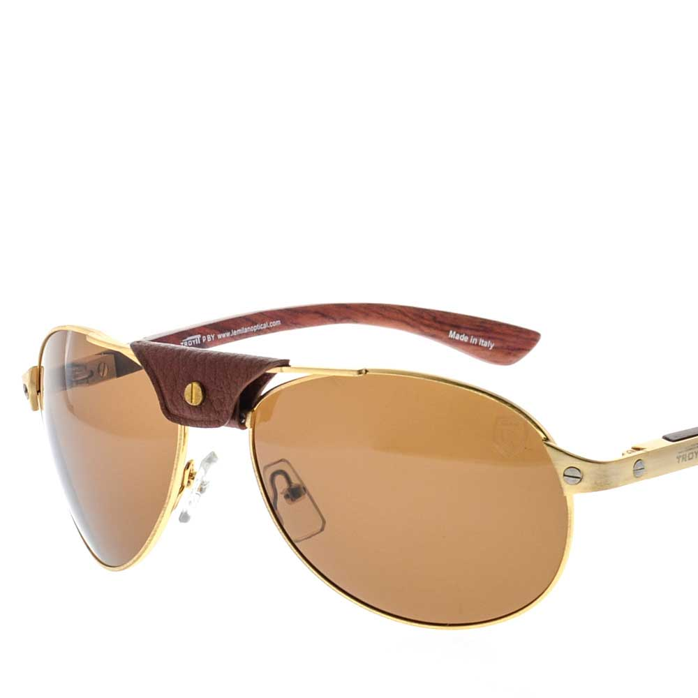 Troy Sunglass for men
