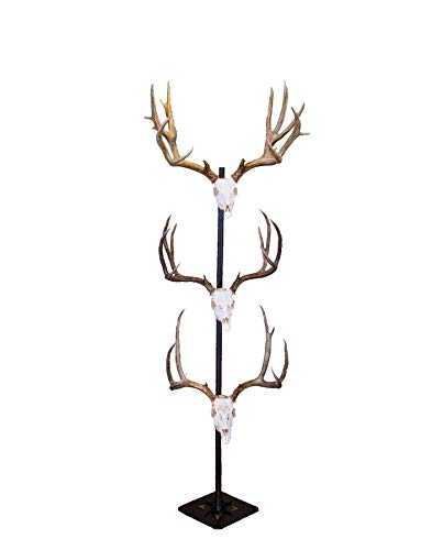 Skull Hooker Trophy Tree European Trophy Mount – Hang up to 5 Taxidermy Deer Antlers and other Skulls for Display – Graphite Black