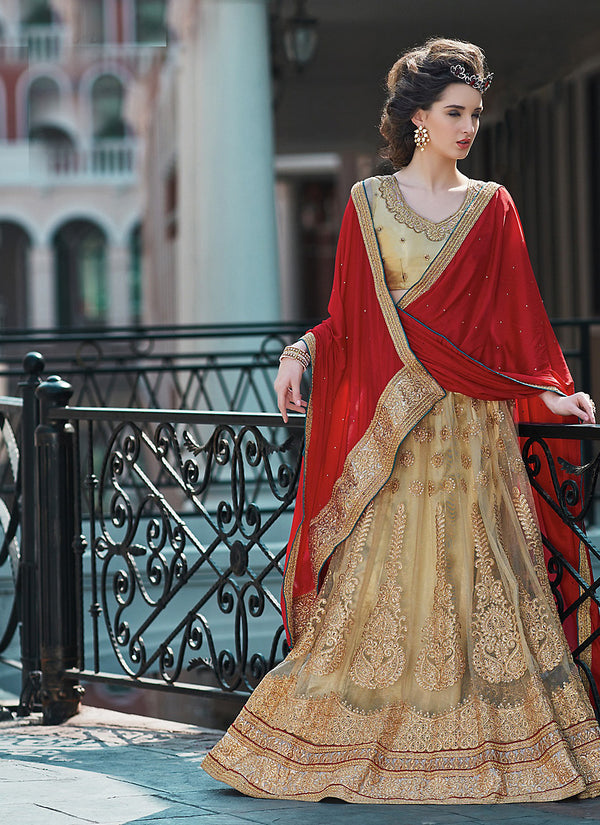 Women's Tan Brown Color Pretty A Line Lehenga Style With Crystals Stones Work Dupatta by Brthika