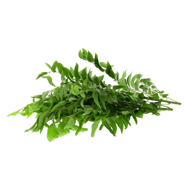 Curry Leaves India 1 bunch