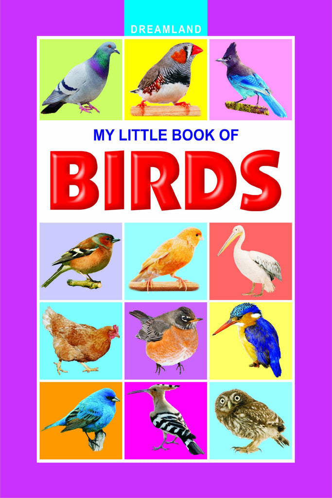 My Little Book Of Birds