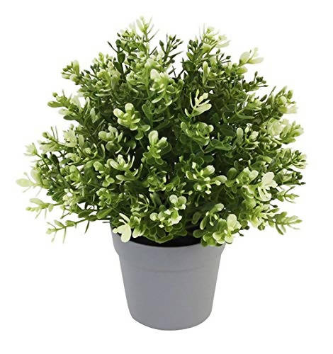 RSTC Decorative Artificial Plant - Kashmiri (2 Color Shade, Pack of 1)